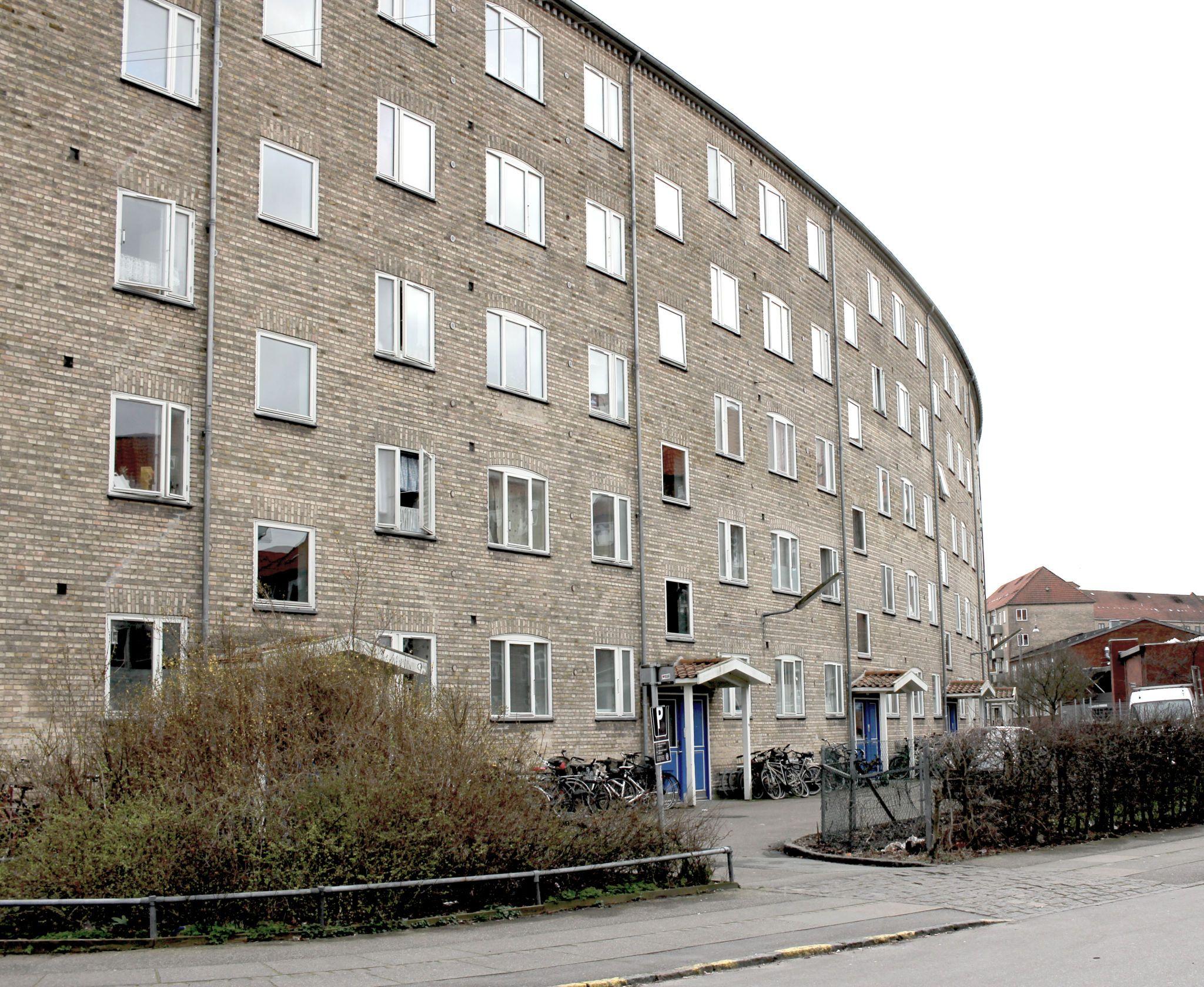 Abildgaard 3